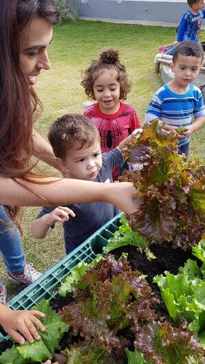Projeto Horta na Escola faz sucesso entre as crianças - Crédito: Divulgação