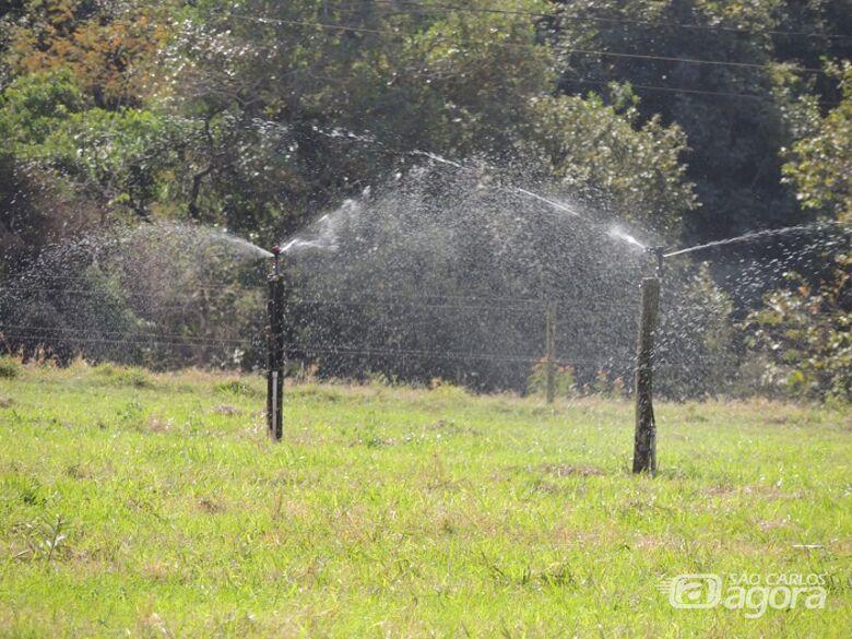 Curso avançado de irrigação de pastagens em São Carlos oferece 12 vagas - Crédito: Ana Maio