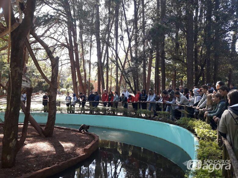 Jovens da Children's International Summer Villagesvisitam Parque Ecológico de São Carlos - Crédito: Divulgação