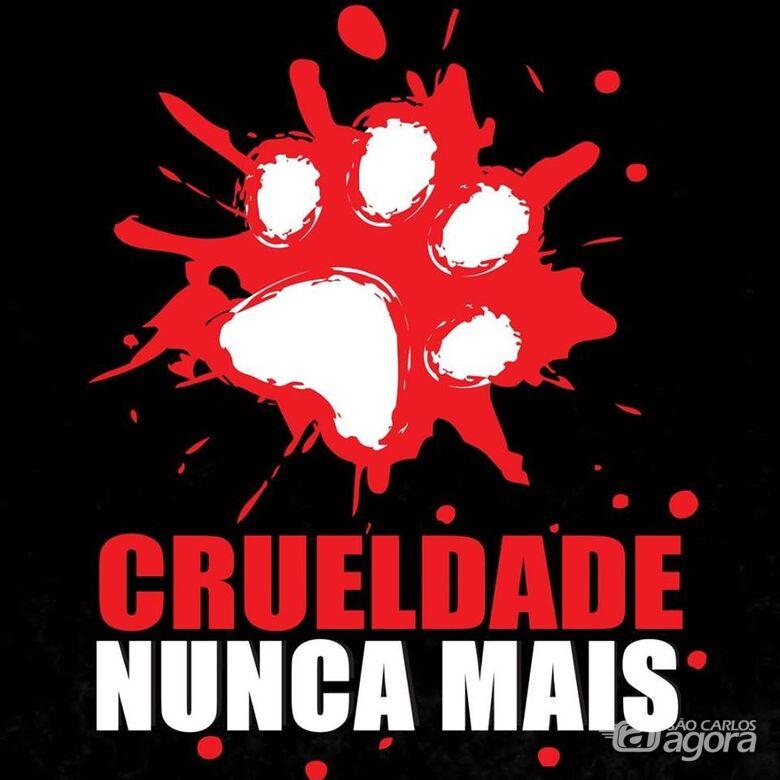 Movimento em São Carlos repudia maus tratos a animais -