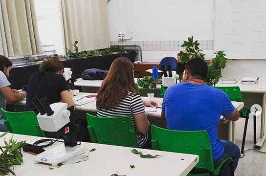 UFSCar promove curso em Restauração, Licenciamento e Adequação Ambiental - Crédito: Instagram/posrestauracaoambiental