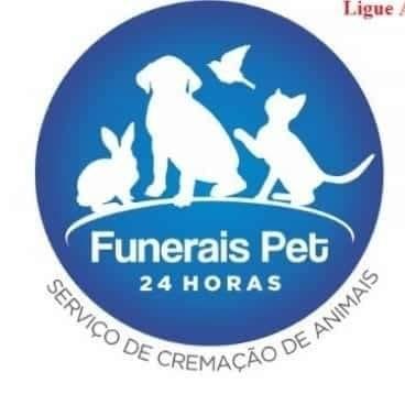 Homenagem da Funerais Pet ao cachorrinho Boby -