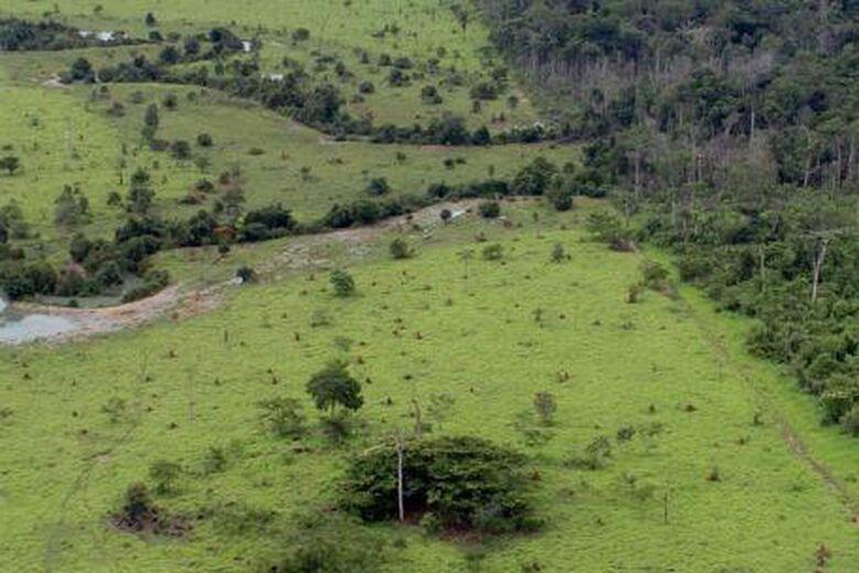 Declaração do Imposto sobre a Propriedade Territorial Rural deve ser entregue até 30 de setembro - Crédito: MMA
