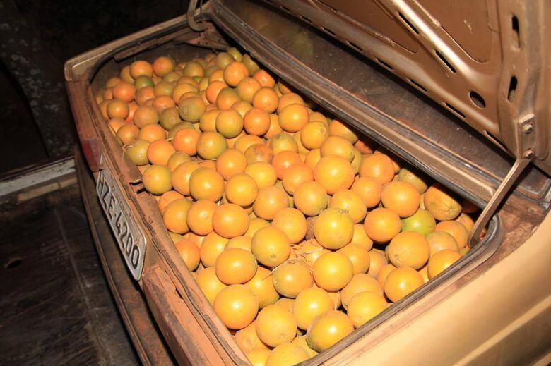 Dupla é detida com laranjas de origem duvidosa em Ribeirão Bonito - Crédito: Marco Lúcio