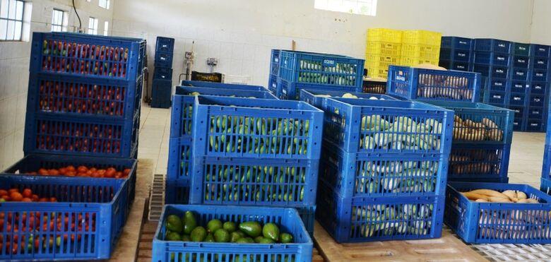 Banco de Alimentos da Secretaria de Agricultura e Abastecimento será reformado - Crédito: Divulgação