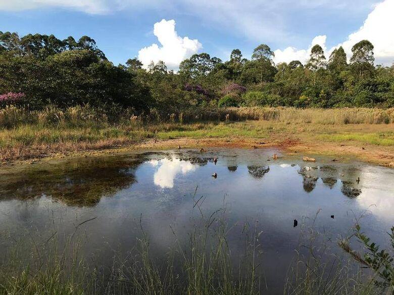 UFSCar promove caminhada e prática de yoga no Cerrado neste domingo - Crédito: Divulgação