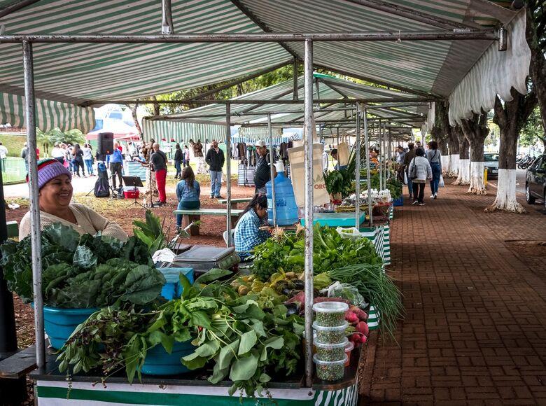 Semana da Agricultura Orgânica e Fitoterápica de São Carlos começa neste sábado - Crédito: Divulgação