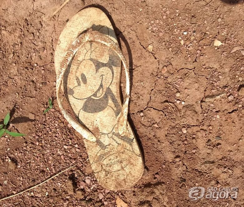 Corpo de adolescente é encontrado em estado de decomposição em fazenda da região - Crédito: Repórter Naressi