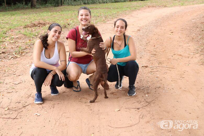canil municipal estará aberto a visitação neste sábado - Crédito: Divulgação