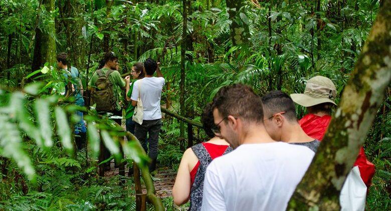 """O projeto de extensão """"Visitas Orientadas à Trilha da Natureza"""" da UFSCar nasceu em 1986 - Crédito: Trilhas da Natureza/UFSCar"""