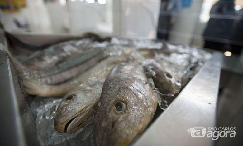 Tradicionalmente o peixe é consumido na Semana Santa - Crédito: Marcelo Camargo/Agência Brasil