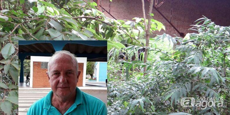 Taxista Antonio Moura, 63 anos, está desaparecido desde o dia 21 de janeiro - Crédito: Bocaina Informa