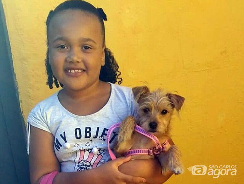 """16 animais são adotados """"sábado de visitação"""" no Canil e Gatil municipal - Crédito: Divulgação"""