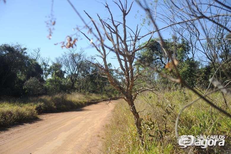 UFSCar suspende atividades de visita ao Cerrado - Crédito: Divulgação