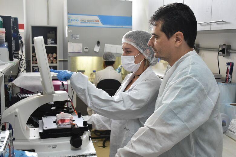 Pesquisadores do IQSC estudam compostos promissores no combate ao câncer - Crédito: Henrique Fontes