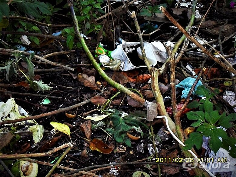 Lixo e entulho é preocupação de moradores do Castelo Branco e Azulville I e II - Crédito: Divulgação