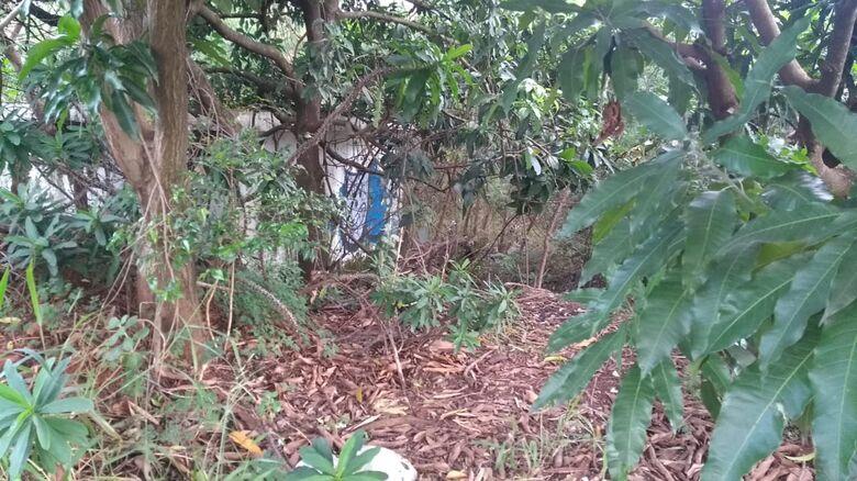 """Casa abandonada serve de """"atrativo"""" para moradores de rua - Crédito: Divulgação"""