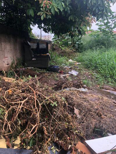 Terreno virou lixão a céu aberto e criadouro de animais peçonhentos - Crédito: Divulgação