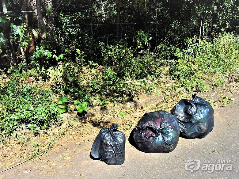 Lixo em sacos plásticos: limpeza nas margens do Córrego Gregório de olho na saúde pública - Crédito: Marcos Escrivani