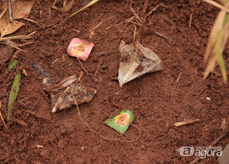 A metodologia holandesa chamada Tea Bag Index (TBI) está sendo usada por cientistas da Embrapa Pecuária Sudeste em parceria com a Universidade Federal de São Carlos (UFSCar) - Crédito: Luiz Paiva
