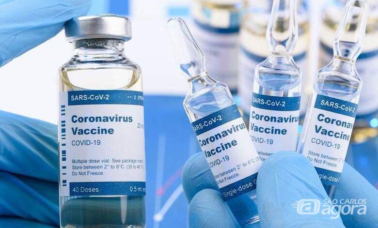Vacinas poderão controlar a doença, mas não o vírus, diz médico do Instituto Butantan - Crédito: Divulgação/Internet