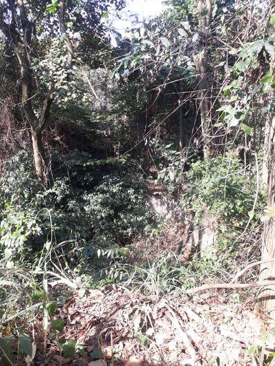 PMs evitam suicídio em bosque no Planalto Paraíso - Crédito: Maycon Maximino