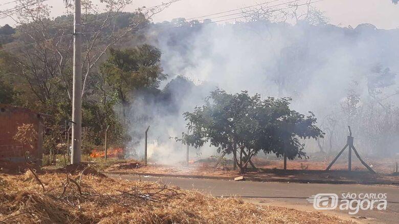 Incêndio em mata assustou moradores - Crédito: Whatssapp SCA