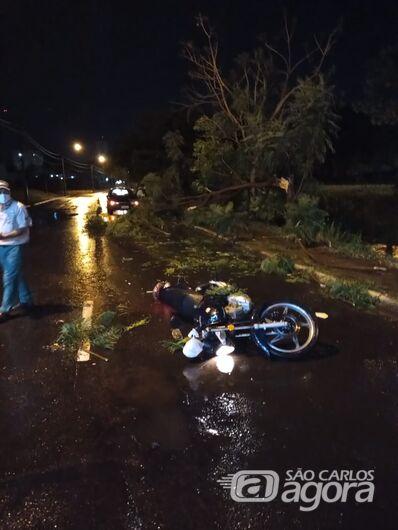 Árvore cai sobre motociclista na marginal - Crédito: Jeferson/Colaborador SCA