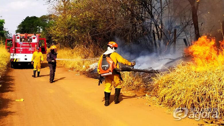 Fogo consome mais de 40 mil metros quadrados de mata na região do Embaré - Crédito: Maycon Maximino
