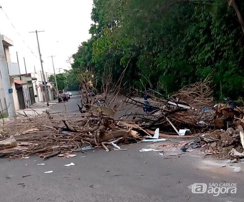 Moradores colocaram galhos de árvores no meio da rua para evitar que bairro seja emporcalhado por pessoas que não possuem higiene - Crédito: Divulgação