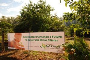 http://media.saocarlosagora.com.br/_versions_/uploads/imagens/4-maternidade_site_s300.jpg