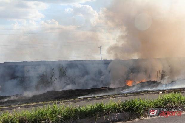 http://media.saocarlosagora.com.br/uploads/queimadassex5.jpg