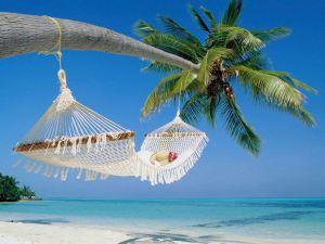http://media.saocarlosagora.com.br/uploads/compracoletivaferias2.jpg
